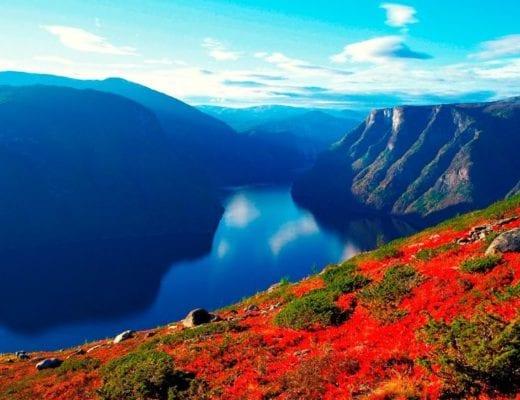 oppleve i Norge